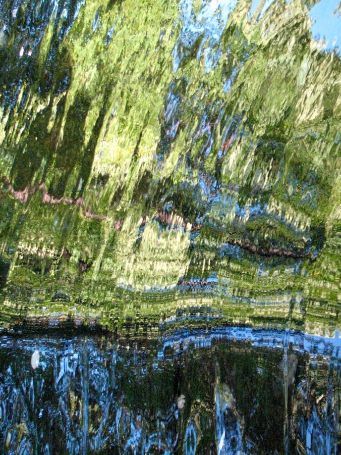 Park ved vann