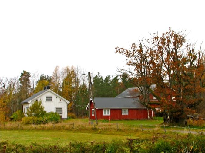 Gården på Veholt, eika til høyre.